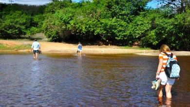 Photo of Comissão na Alba aprova visita de parlamentares ao rio Paraguaçu