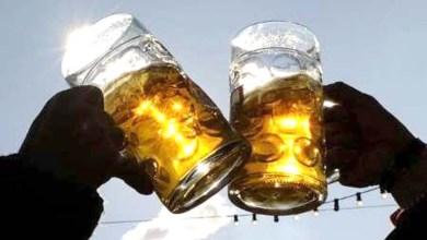Photo of Pessoas menos inteligentes bebem mais que pessoas com QI elevado, diz pesquisa