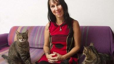 Photo of Mundo: Mulher casada com gatos há dez anos revela que não se imagina unida com humanos