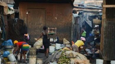 Photo of Erradicação da pobreza até 2025 na América Latina e Caribe é possível, diz diretor-geral da FAO