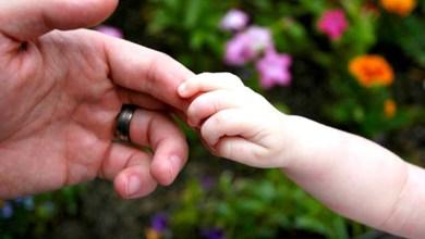Photo of Ministra do STF reconhece adoção de criança por casal homoafetivo