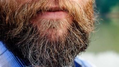 Photo of Barba é tão suja quanto vaso sanitário, diz pesquisador