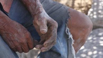 Photo of Trabalho escravo: Construção civil lidera casos com 452 resgates