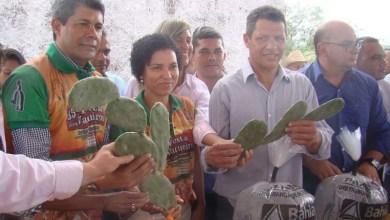 Photo of Governo investe na agricultura familiar em Boa Vista do Tupim com distribuição de sementes e mudas