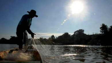 Photo of Pescadores e piscicultores de três cidades da Chapada Diamantina são cadastrados em programas sociais