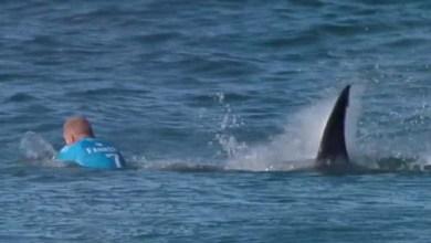 Photo of Tubarão ataca tricampeão mundial de surfe e final é interrompida; veja vídeo