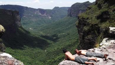 Photo of Parque Nacional da Chapada Diamantina completa 30 anos e luta para manter biodiversidade
