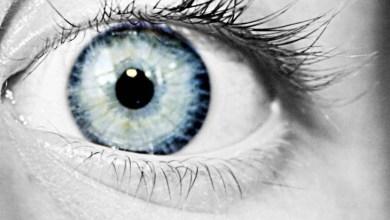 Photo of Reino Unido faz operação com células-tronco embrionárias para tratar cegueira