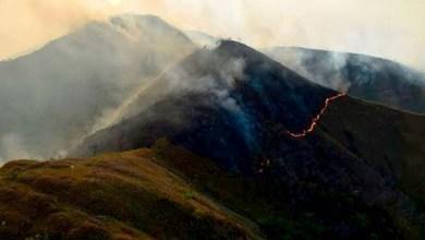 Photo of Chapada Diamantina teve mais de 9 mil hectares consumidos pelo fogo, diz ICMBio
