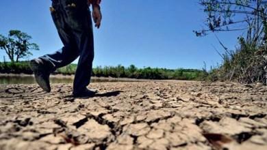 Photo of Oposição pede união de poderes para a apresentação de medidas que ajudem a combater a seca