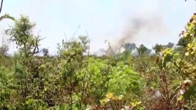 Photo of Prevfogo registrou 240 focos de incêndio florestal no Oeste baiano