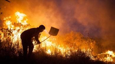 Photo of Chapada: Fogo continua em regiões de difícil acesso; brigadistas seguem combatendo