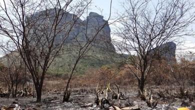 Photo of Souto pede agilidade ao Governo Estadual para combater incêndio na Chapada Diamantina