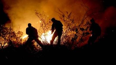 Photo of Fotos e vídeo: Confira imagens do grande incêndio que atinge o Parque Nacional da Chapada Diamantina