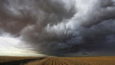 Photo of Pesquisa mostra que El Niño será o terceiro mais forte da história
