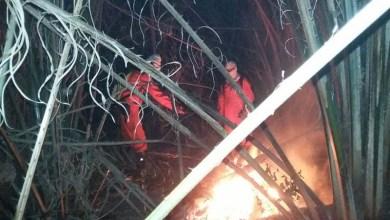Photo of Chapada: Presidente da brigada de Andaraí denuncia a 'indústria do fogo' na região