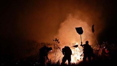 Photo of Chapada: Parque Nacional se prepara para combater os incêndios florestais