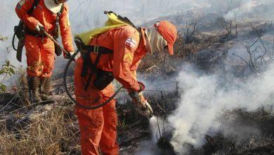 Photo of Incêndios florestais no Parque Nacional da Chapada Diamantina são controlados, dizem autoridades