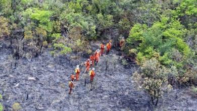 Photo of Combate ao fogo na Chapada Diamantina terá o reforço de 47 brigadistas da Defesa Civil Nacional
