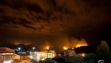 Photo of Chapada: Incêndio florestal em Ibicoara está próximo da cidade e assusta moradores