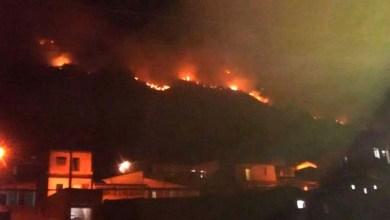Photo of Deputado do PV chama atenção para fogo que destrói vegetação em Jacobina