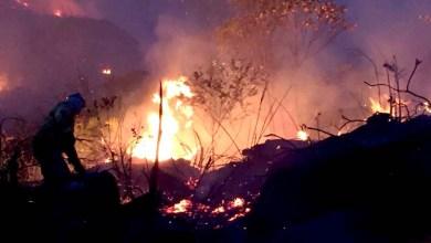 Photo of Fogo na Chapada: Presidente da Cifa relata incêndio em Igatu e volta a pedir atuação das autoridades