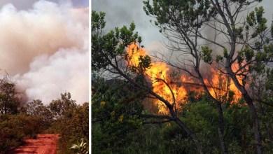 Photo of Brigada alerta para fogo que se aproxima de casas e da área urbana em Lençóis; chamas voltam no Capão