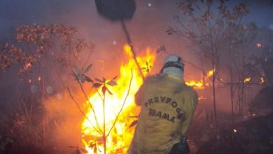 Photo of Ibama aponta para as ações realizadas durante combate aos incêndios na Chapada Diamantina