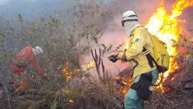 Photo of Chapada: Novos focos são combatidos por brigadistas voluntários nos Morros da 'Rapadura' e 'Chapadinha'