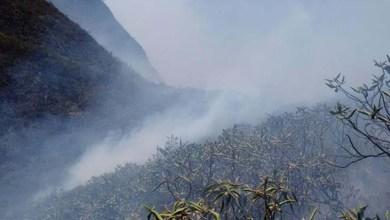 Photo of Fogo na Chapada: Incêndio em Jacobina se alastra e dizima fauna e flora; confira imagens
