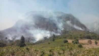 Photo of Novos incêndios atingem Barra da Estiva e Andaraí; Morro do Ouro e Roncador sob ameaça