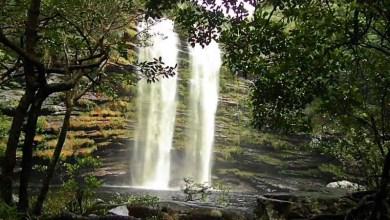 Photo of Chapada: Cachoeira do Palmital e seus caminhos; conheça mais uma opção de trekking