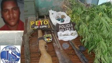 Photo of Chapada: Polícia encontra 43 pés de maconha em roça em Mucugê