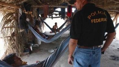 Photo of STF libera divulgação de lista de empresas autuadas por trabalho escravo