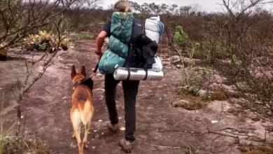 Photo of Chapada: Brigadistas e equipe com cães farejadores encontram artefato utilizado por turista desaparecido