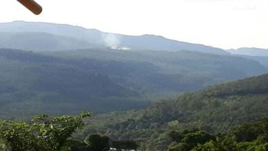 Photo of Chapada: Foco de incêndio atinge vegetação em Andaraí; brigadista cobra ação do governo