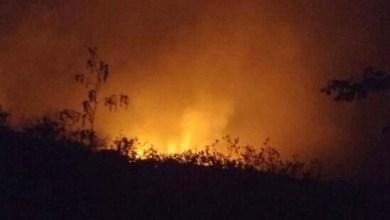 Photo of Chapada: Brigadistas identificam incêndio florestal próximo ao Vale do Pati