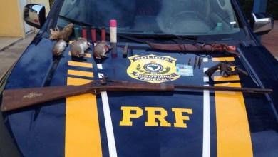 Photo of Chapada: PRF prende caçadores de 'preá' na região de Itaberaba; um dos suspeitos tinha CNH falsa