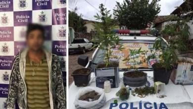 Photo of Chapada: Polícia prende traficante de maconha na cidade de Mucugê
