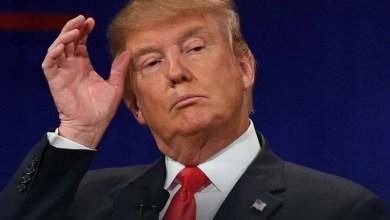 Photo of [Artigo]: As semelhanças do povo brasileiro com Donald Trump
