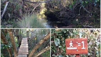 Photo of Chapada: Parque Nacional tem fim de ano com melhorias em sua infraestrutura