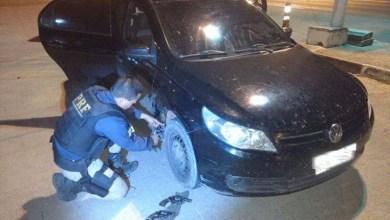 Photo of Chapada: Armas de fogo provavelmente usadas em homicídio em Barra são apreendidas em Seabra