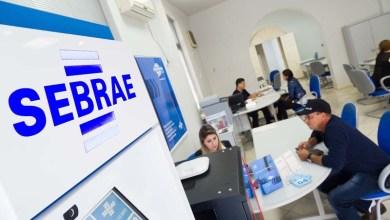 Photo of Chapada: Novos agentes de desenvolvimento do Sebrae são nomeados em Ibicoara, Morro do Chapéu e Novo Horizonte