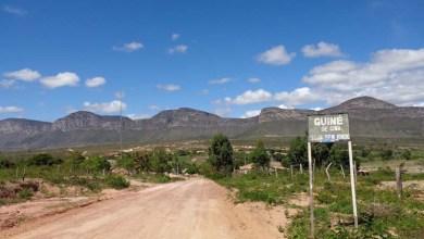 Photo of Chapada: Vila de Guiné é um dos caminhos com história de força no comércio