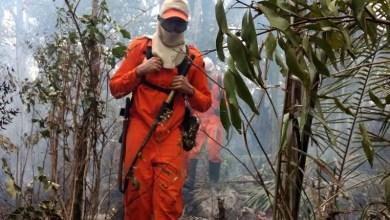Photo of Deputado sugere ampliar e equipar brigadas para diminuir grandes incêndios na Chapada