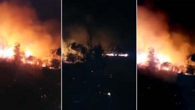 Photo of Chapada: Foco de incêndio florestal em Mucugê é debelado por brigadistas voluntários