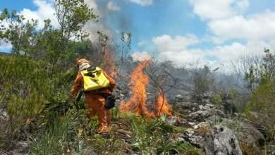 Photo of Chapada: Formação de brigada de combate a incêndio abre inscrição; há vaga de gerência em Itaetê