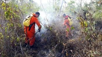 Combate ao fogo em município de Lençóis - FOTO CBMBA (6)