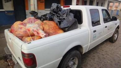 Photo of #Bahia: Quase metade da carne bovina abatida no estado tem origem clandestina