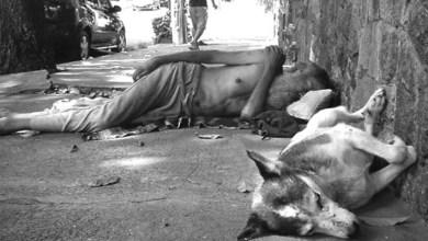 Photo of #Bahia: Levantamento aponta que Salvador tem 22 mil pessoas morando nas ruas